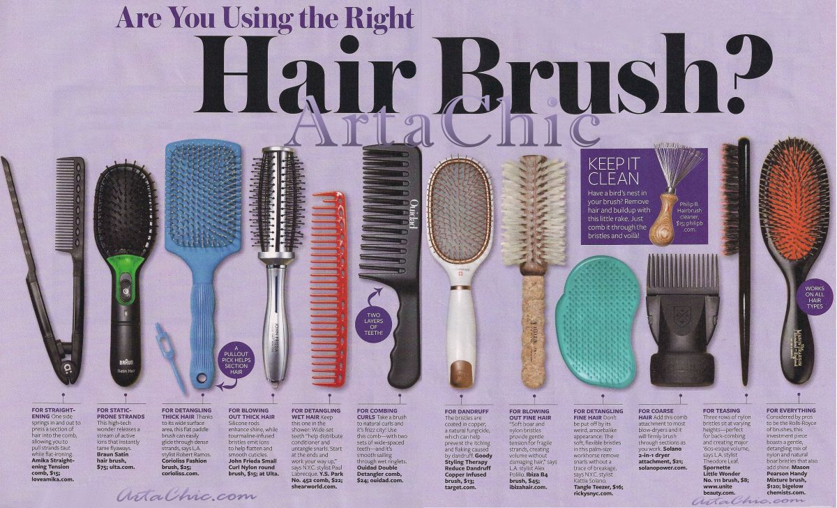 Different Dog Grooming Combs