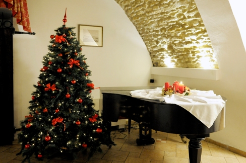 Christmas-parties-in-Platina-Cellar