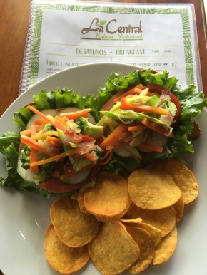 Where Do You Find Healthy Food In CostaRica?